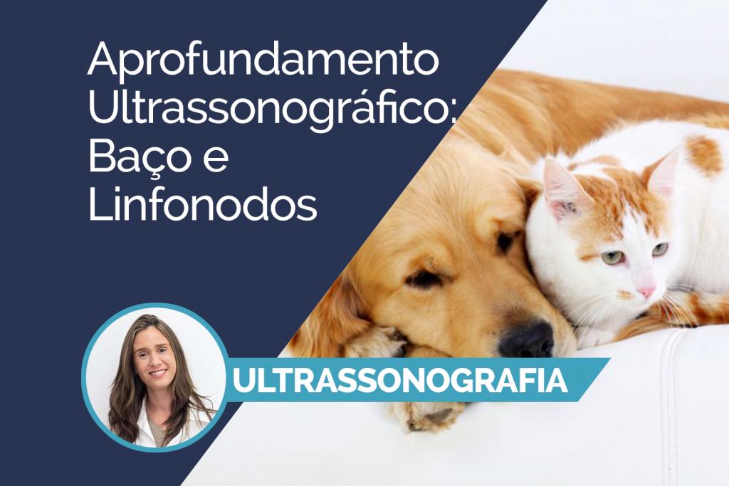 Aprofundamento Ultrassonográfico: Baço e Linfonodos